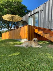Pet or pets staying with guests at Container no Vale dos Vinhedos em Bento Gonçalves