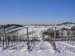 Villa Romaniani during the winter