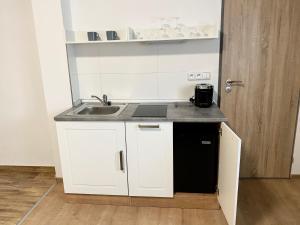 Kuchyň nebo kuchyňský kout v ubytování Frýdecká Apartments