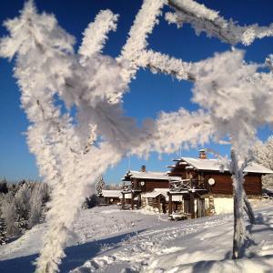 Агроферма Точка Отдыха зимой