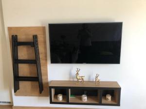 TV in/ali zabaviščno središče v nastanitvi Vila Mojca - Peridot Apartment