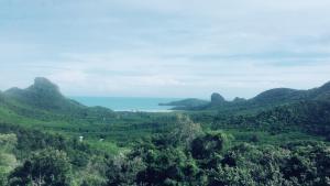 Naturlandschaft in der Nähe des Resorts