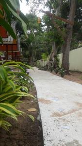 A garden outside Funky Fish Garden Resort