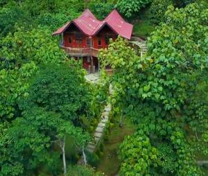 A bird's-eye view of Hotel Orangutan