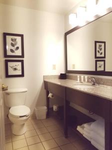A bathroom at Country Inn & Suites by Radisson, Willmar, MN