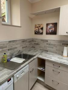 A kitchen or kitchenette at 2Raum-Apartment Leznew