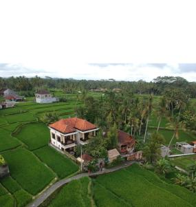 Een luchtfoto van Ubud Sawah Villa, Cinery and Homestay