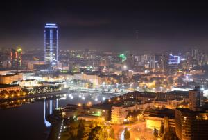 A bird's-eye view of Vysotsky Hotel
