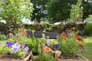 A garden outside gite La Pichardière, campagne et calme