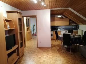 TV in/ali zabaviščno središče v nastanitvi Apartment Krek