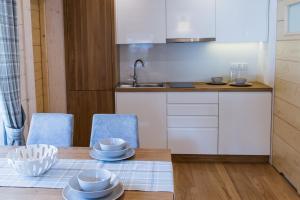 A kitchen or kitchenette at Apartamenty Kuźnice 13