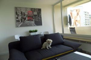 Pet or pets staying with guests at Modernes Apartment Duisburg