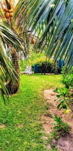 Um jardim em MOOREA - Fare Taina Iti