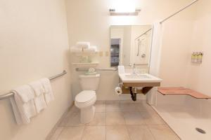 A bathroom at Candlewood Suites-West Springfield, an IHG Hotel