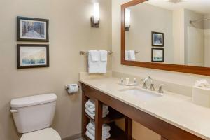 A bathroom at Comfort Suites Amish Country