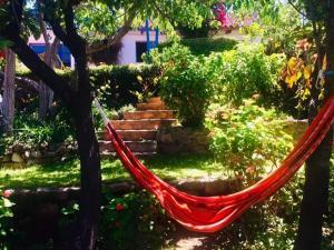 Jardín al aire libre en La Selenita