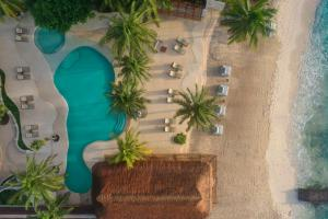 A view of the pool at Viceroy Riviera Maya - Luxury Resort or nearby