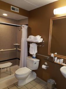 A bathroom at Radisson Hotel Milwaukee West