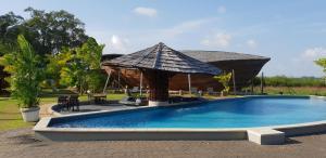 Het zwembad bij of vlak bij Houttuyn Wellness River Resort