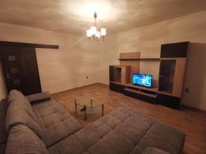 Televízia a/alebo spoločenská miestnosť v ubytovaní Apartman Anro