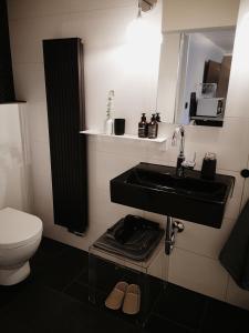 A bathroom at Lilienthal1 apartsuite
