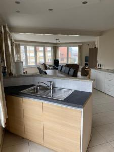 A kitchen or kitchenette at Westhoek Apartments