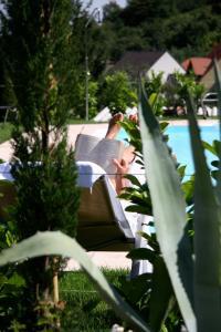 Ein Blick auf den Pool von der Unterkunft Wiedemann's Weinhotel oder aus der Nähe