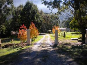 A garden outside Hillview Oak B&B