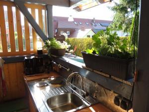 Küche/Küchenzeile in der Unterkunft Pension 19