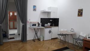 Kuchyň nebo kuchyňský kout v ubytování Семейный Номер