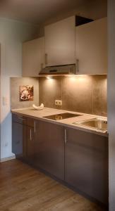 A kitchen or kitchenette at Hofgut Held