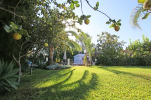 A garden outside Finca Mi Hogar