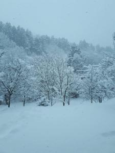 Popock Dilijan 2 during the winter