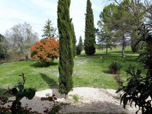 A garden outside Domaine du Garret