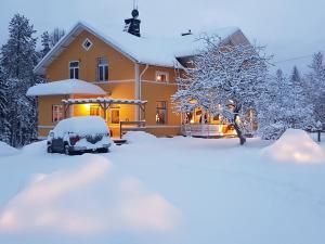 Wildlife Sweden Camp Ängra in de winter
