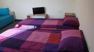 Легло или легла в стая в Комплекс Magic Life