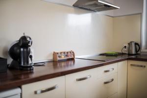 Kuchyň nebo kuchyňský kout v ubytování Apartmany Butterfly