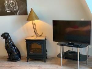 TV/Unterhaltungsangebot in der Unterkunft Apartment Hechtstraße