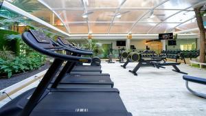 Het fitnesscentrum en/of fitnessfaciliteiten van BULL Dorado Beach & SPA