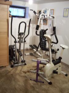 Das Fitnesscenter und/oder die Fitnesseinrichtungen in der Unterkunft Haus Schmid