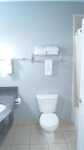 A bathroom at Magnolia Inn and Suites Olive Branch