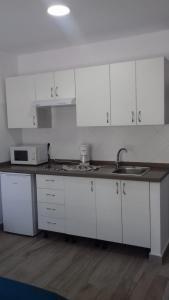 Een keuken of kitchenette bij Apartamentos Pez Azul