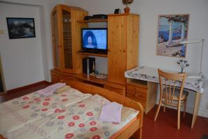 TV a/nebo společenská místnost v ubytování Penzion Jarmilka
