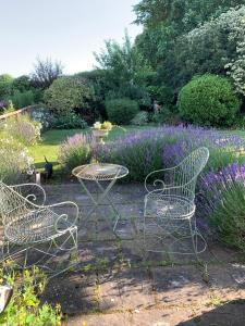 A garden outside Cary Fitzpaine House