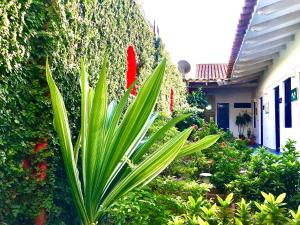 A garden outside Zana Hotel Boutique