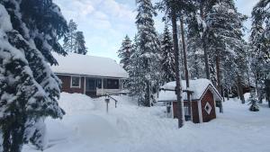 Villa Lapintiira talvella