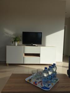 A television and/or entertainment centre at Apartament w zieleni do wynajęcia blisko jeziora