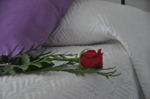 Ein Bett oder Betten in einem Zimmer der Unterkunft Hostal El Levante