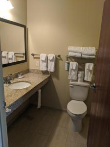 A bathroom at Cobblestone Inn & Suites-Winterset