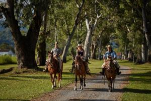 Horseback riding at the hotel or nearby